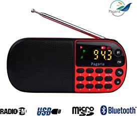 PAGARIA L837BT Portable Multimedia FM/Mp3 Player with Bluetooth,USB,Clock