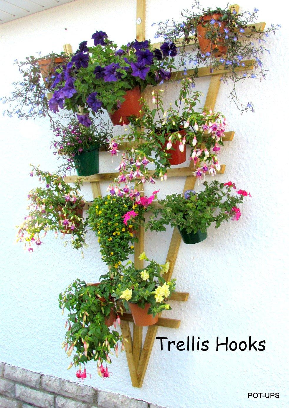 Trellis Hooks, 6 plant pot holders to hang 6\