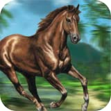Jungle Run Horse 2016 - Carreras de caballos juego