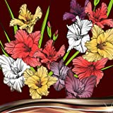Gladiole Fotocollage