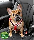 Kleinmetall Allsafe Comfort Hundesicherheitsgurt mit Schnell-Öffner-Verschluss
