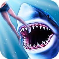 Shark Shark Attack