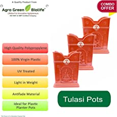 Green and Pure Tulasi / Tulsi Pot (Small) | Planter Pot | Plant Containers - Brown Colour
