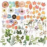160pcs Stickers Autocollants Fleurs Plantes Feuilles d'Érable Gommette Sticker Scrapbooking Note Flower Décoration DIY Cadeau