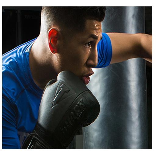 International Real Boxing Champion Game