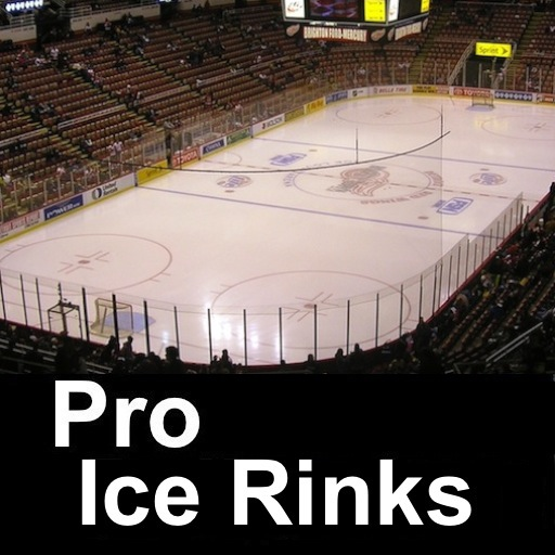Pro Hockey Arenas Ice Rinks and Teams -