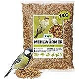 Ewl Naturprodukte Vers de farine séchés, 1 kg correspond à 6500 ml, friandises pour oiseaux, poissons, tortues, rongeurs et r