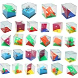 THE TWIDDLERS 28 Mini Puzzle Box con Livelli Assortit - Rompicapo Giochi Adulti e Bambini
