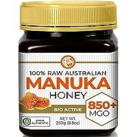 Good Natured Raw Manuka Honey MGO 850+ / UMF 20+ | High-Grade Medicinal Strength Honey Manuka | 250g | 8.8 oz