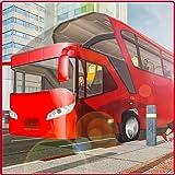Turista Transporte Autobús Conducción