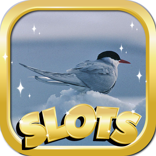 Las Vegas Slots Free : Arctic Riesgo Edition - Free Vegas Style Casino Slots Game & Spin To Win Tournaments -