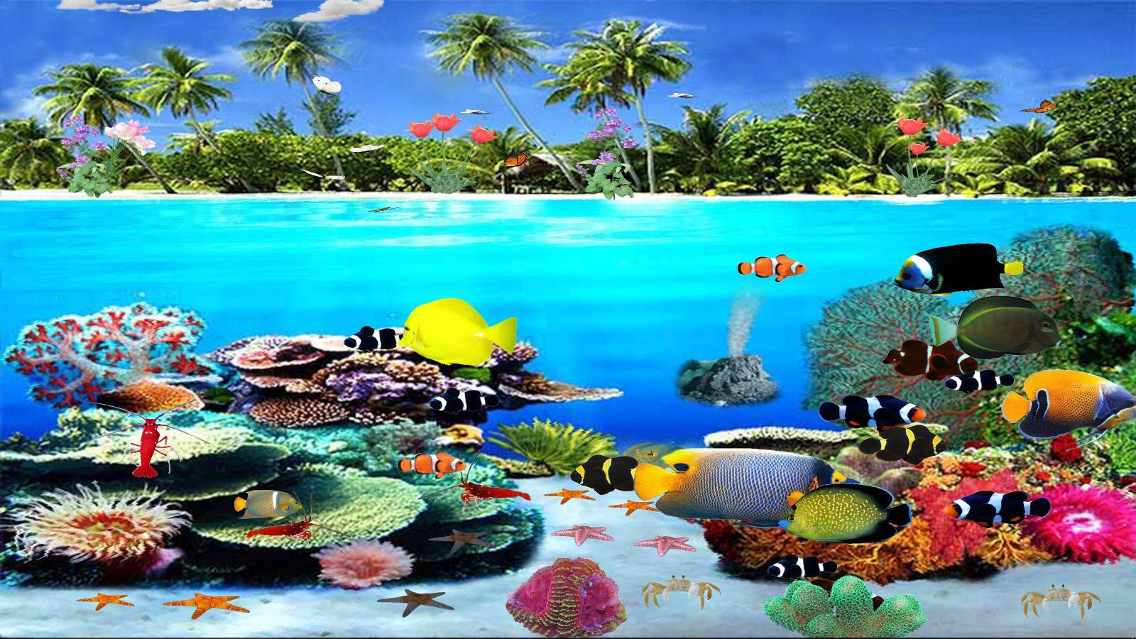 Great Barrier Reef [Download]