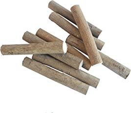 KSK Akashashi Tree Wood Chew Stick for Squirrel, Rabbits, Guinea, Pigs, Chinchilla and Parrot