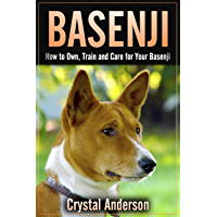 Basenji: How to Own, Train and Care for Your Basenji (English Edition)