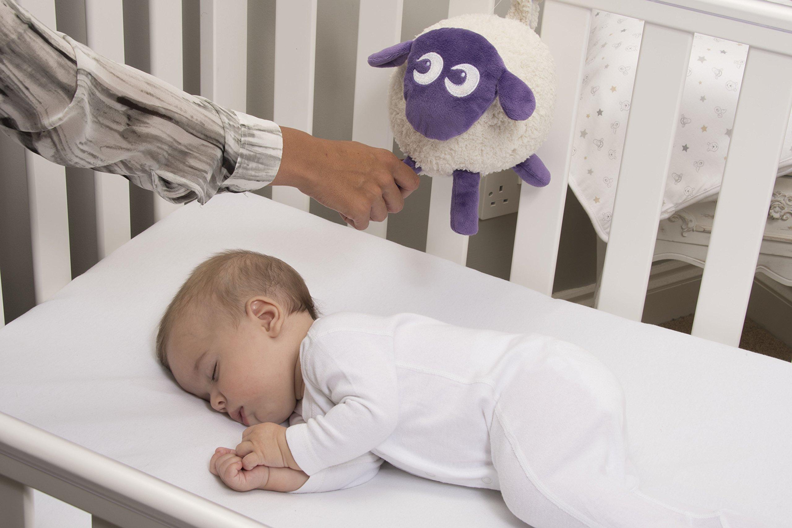 SweetDreamers ewan the dream sheep - purple 3