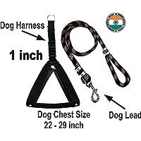 ADIOS Nylon Dog Belt Combo of 1 inch Black Nylon Padded Dog Body Cross Harness with Black Lead 1.5m Lengthy Dog Harness…