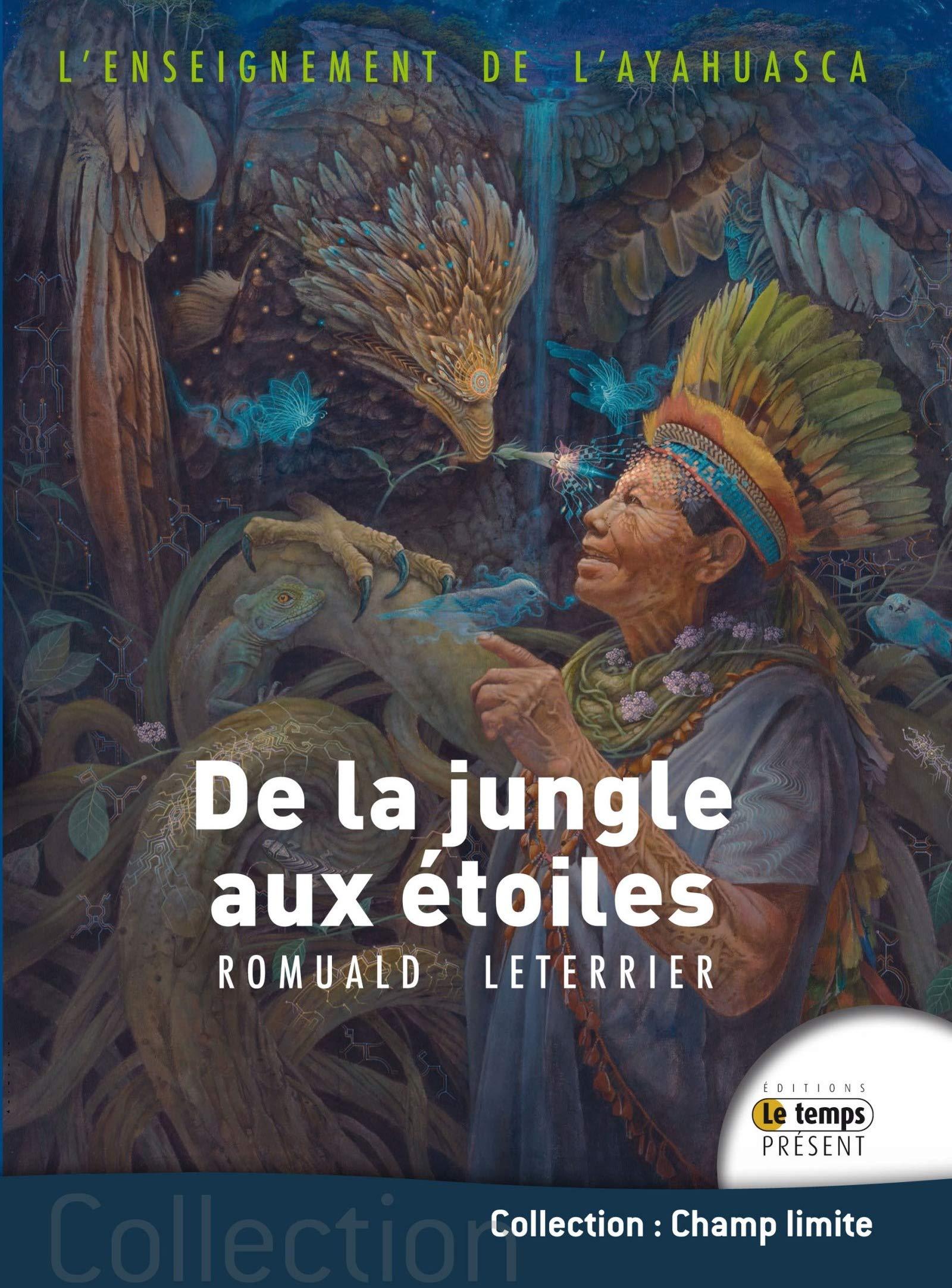 De la jungle aux étoiles: L'enseignement de l'Ayahuasca par Romuald Leterrier