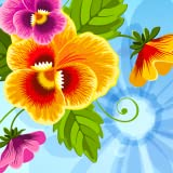 Blumen-Show-Einladungskarten
