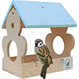 PetNest Mini Red Wild Hanging Bird Feeder Chabutra Gift idea for Outside, Patio, Backyard, with Free Hanging (Blue)
