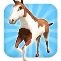 Eine Pferdefahrt: Wilde Trail Run & Jump Game