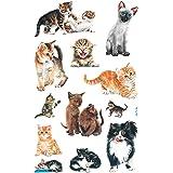 AVERY Zweckform 53574 kinderstickers katten 36 stickers