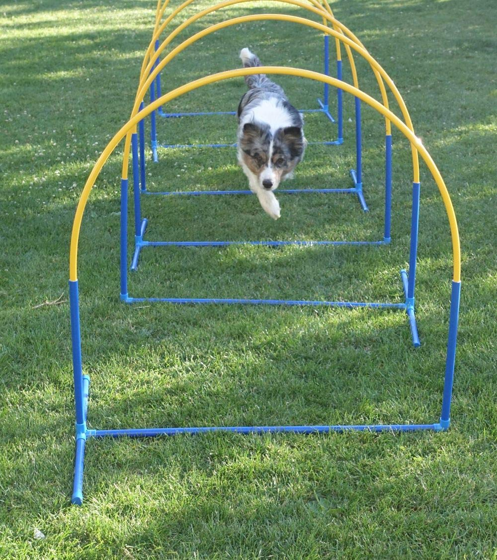 "Professional Agility Tunnel // Dog Agility Pipe Tunnel /""PROFI // 2ft /Ø 5m, magenta incl 16.4ft length 2 saddle bags UK Kennel Club conform"