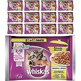 Whiskas Casserole Multipack Bolsitas de Comida Húmeda para Gatos Junior Selección Aves (13 cajas x 4 sobres x 85g)