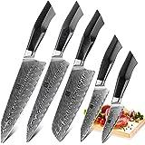XINZUO Ensemble de Couteaux de Cuisine 5 Pièces en Acier Damas, Professionnel de Style Japonais Couteau,Forgé à la Main Coute