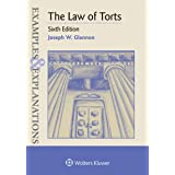 The Law of Torts (Examples & Explanations)