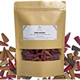 300 Pcs cônes encens Indien - 5 Parfums Floraux et fruités Naturel - Encens cône pour brûleur à encens - Encens de Purificati