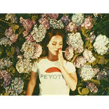 d88d0eb27ae Postergully - Young and Beautiful Lana Del Rey Wall Art Poster 12 x ...