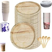 MESH Masters 100% Biodegradable_Eco Friendly_12 Inch Leaf Dinner Plates_Paper Glasses_ Tiffin Plates_Wooden Spoons_Paper…