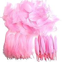 Plumes, 250 pcs Plume pour loisirs créatifs,colorées frappantes pour loisirs créatifs, loisirs créatifs, plumes…