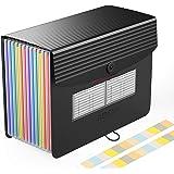 Carpeta Clasificadora - ABClife Archivador acordeón 12 Bolsillos de gran Capacidad soporte Extensible portátil acordeón Clasi