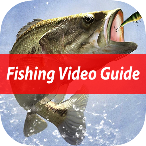 Easy Beginner's Fishing School - Best Basic Video Guide & Tips For Learn Catching Fresh Water Fish To Sea -
