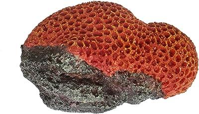 Sri Artificial Coral Aquarium Decoration Ornament for Fish Tank, Red (Medium)