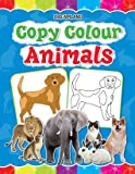 Copy Colour - Animals (Copy Colour Books)