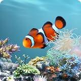 aniPet Marine Aquarium Live Wallpaper (Free)