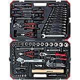 GEDORE R46003100 rode dopsleutelset, 100-delig, met ratel, steeksleutel en bitset, hamer, ringsteeksleutel en tangen