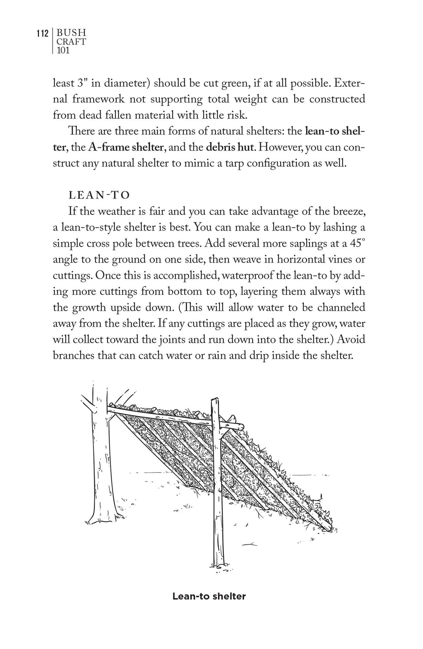 Bushcraft 101: A Field Guide to the Art of Wilderness Survival 6
