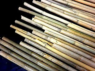 25 Stück Bambus Bambusstange Tonkin 120-180cm 12-20Ø