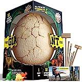 Dr. Daz Grand œuf de Dinosaure, jouet pour enfants, partir de 6, 7, 8, 9, 10 ans