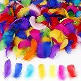MWOOT 450+ Pcs Coloré Plumes De Nature, Artisanat Art Plume Décorative En Plume D'oie pour Capturateurs De Rêve Bandeau Fabri
