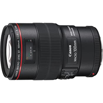 Canon EF 100 mm f/2.8L IS USM Macro Prime Lens for Canon DSLR Camera (Black)