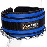 """DMoose Fitness Premium Dip Gürtel mit Kette 36"""" Heavy Duty Stahlkette, Comfort Fit Neopren, Double Stitching - Maximieren Sie Ihre Gewichtheben & Bodybuilding Workouts mit Durable Dipping Belt"""