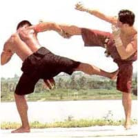 Muay Thai Leg Kicks And Take Overs APP