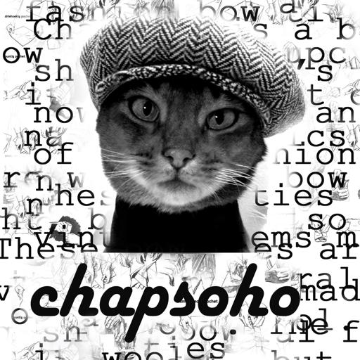 Chapsoho Bow Ties Fashion Silk Bow Tie