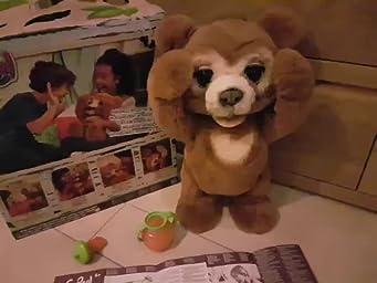 Furreal Friends - Peluche interactivo Cubby Mi Oso Curioso (Hasbro E4591EU4)