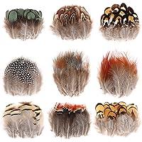 MWOOT 9 Styles Assortis Artisanat Plumes (180 Pièces), Naturel Poulet Plumes pour DIY Boucle d'oreille Ailes Attrapeur…