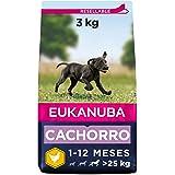 Eukanuba Alimento seco para cachorros de raza grande, rico en pollo fresco 3 kg